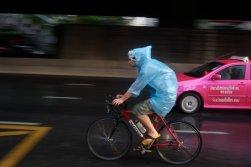 Rain / Thailand